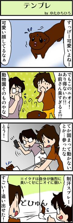 夏休み事件簿5